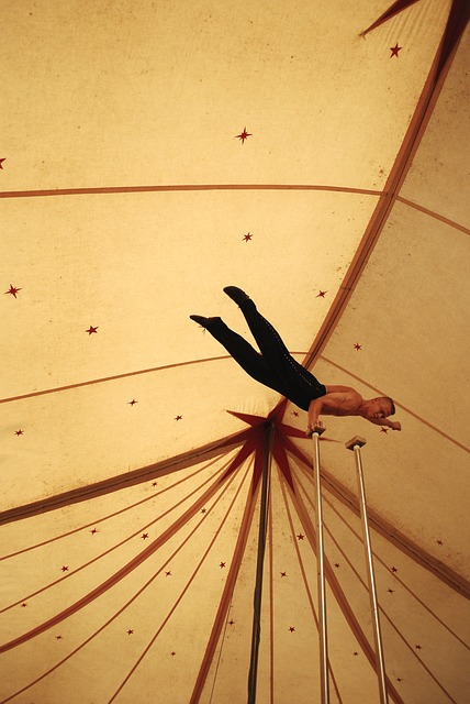 acrobat-472813_640
