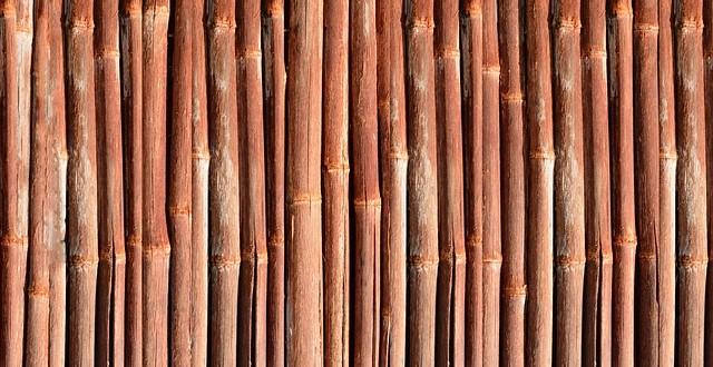 bamboo-886749_640