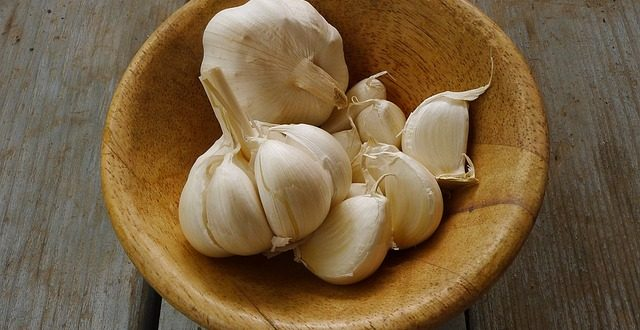 garlic-1374329_640