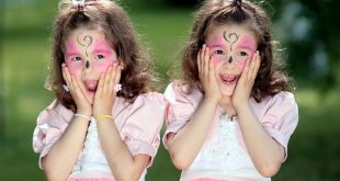twin-1438945_640