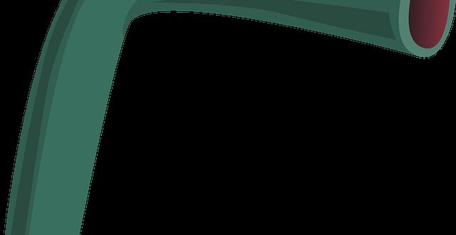 vein-575582_640