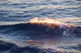 wave-587105_640